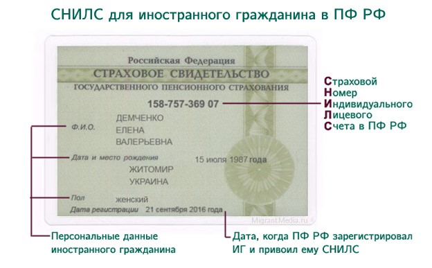 Как украинцу получить СНИЛС в России в 2019 году