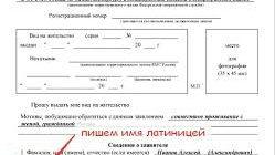 Заявление на получение гражданства (образец заполнения) для детей