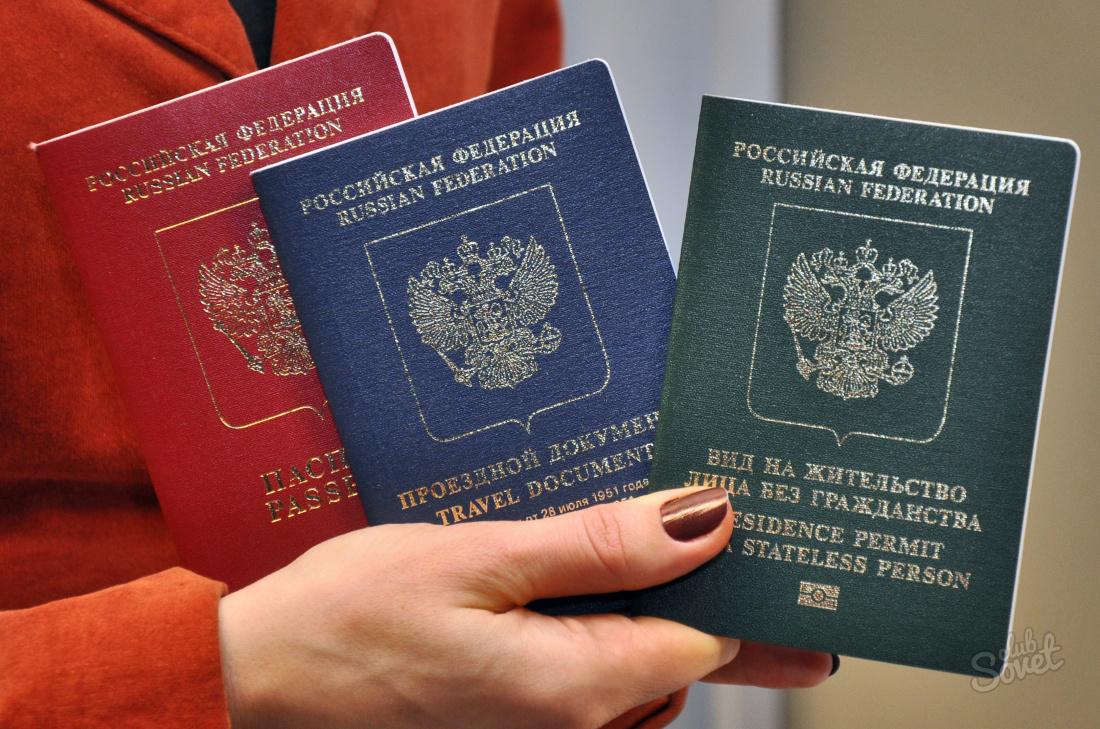 Рвп и внж в россии чем разница