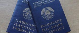 Как получить двойное гражданство Беларусь Россия