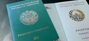 Заявление отказ от гражданства Узбекистана (образец, бланк, куда подавать)
